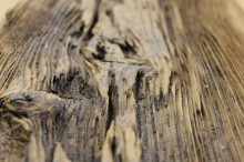brushed-mushroom-wood-3